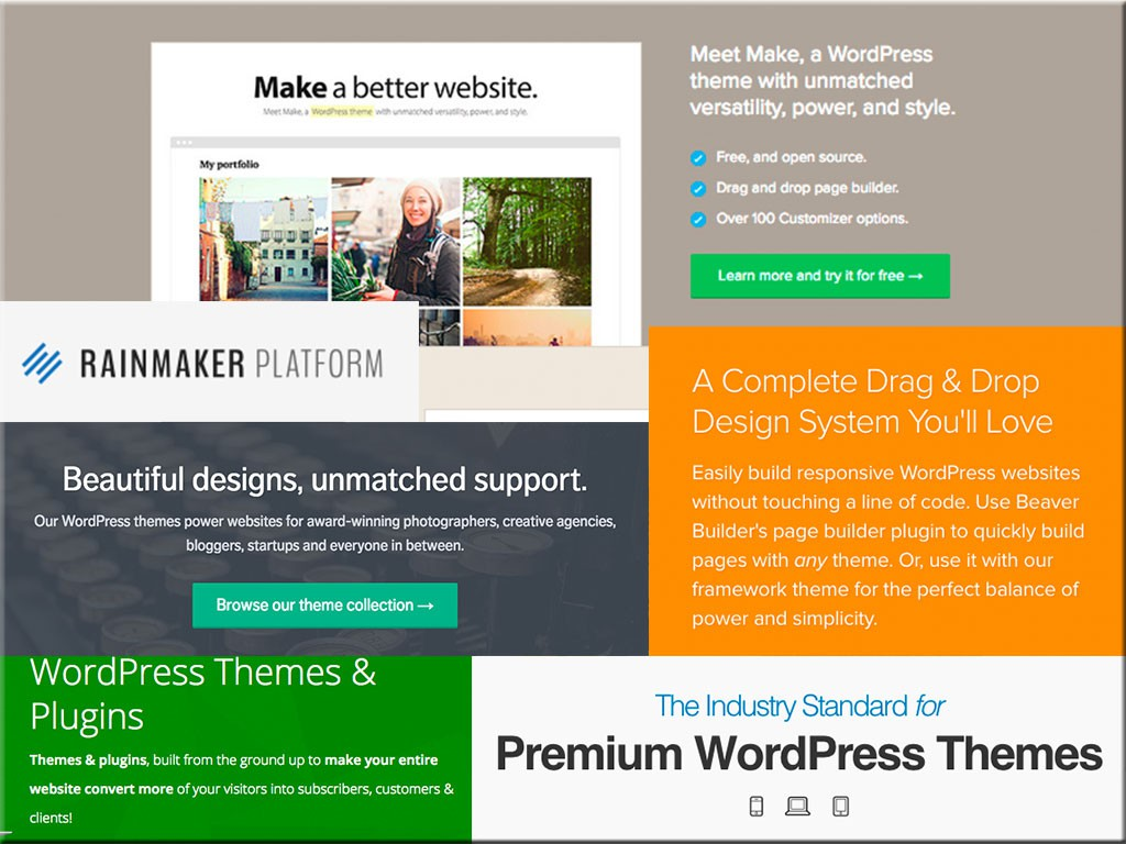 There are a LOT of themes and theme companies for WordPress