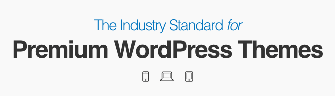 StudioPress is the industry standard for WordPress themes