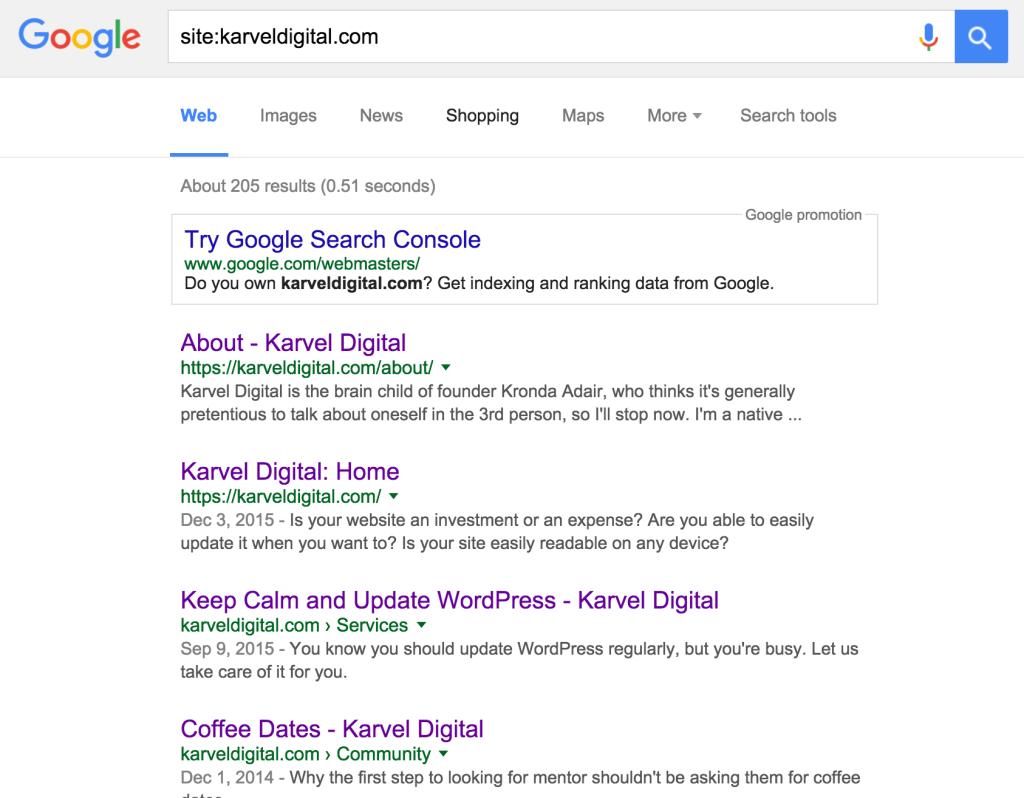 Google indexed pages for Karvel Digital