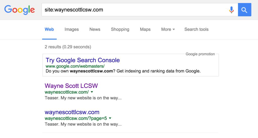 Wayne Scott Search Results