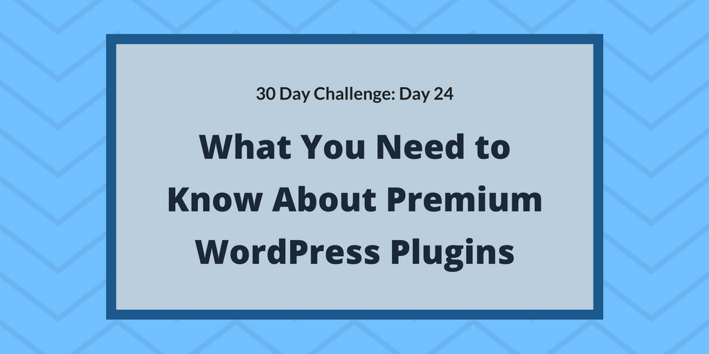 What you need to know about premium WordPress plugins